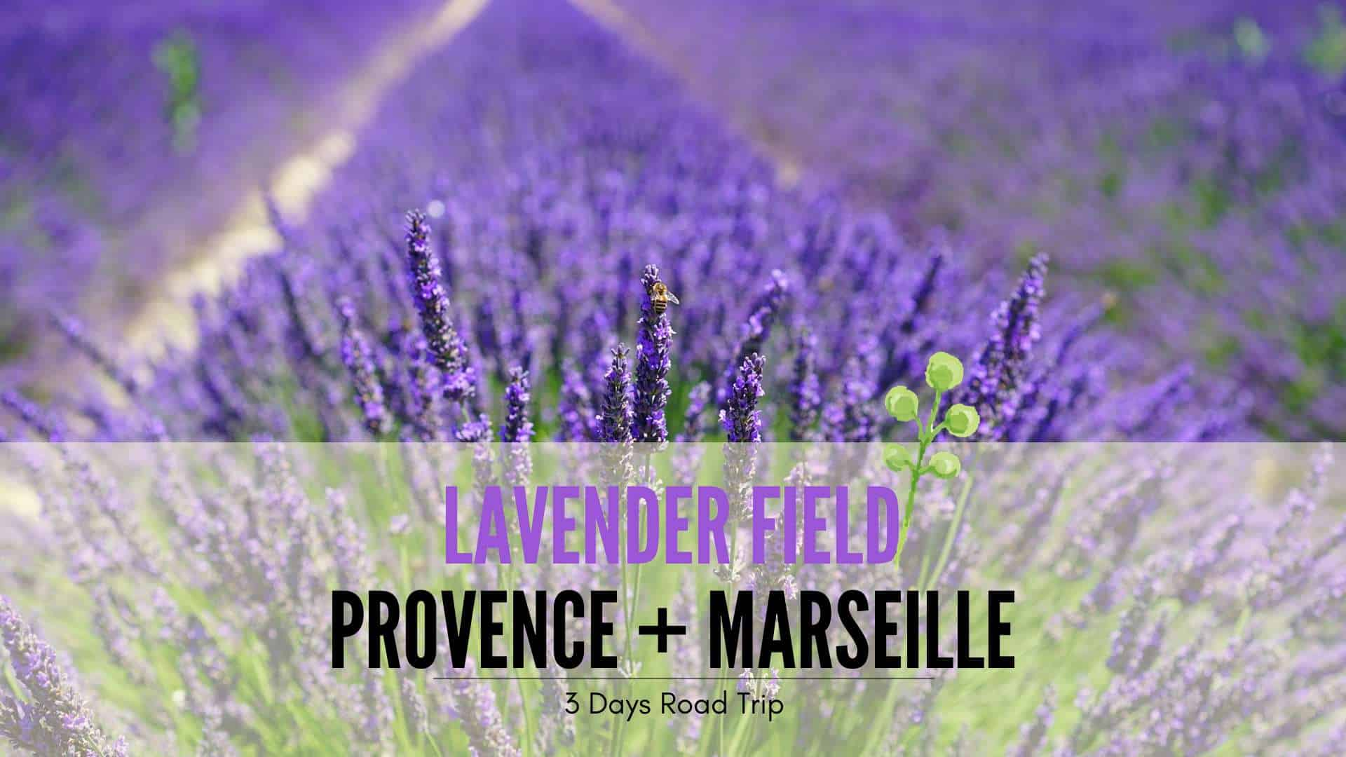3 Days Itinerary Road Trip Lavender Provence And