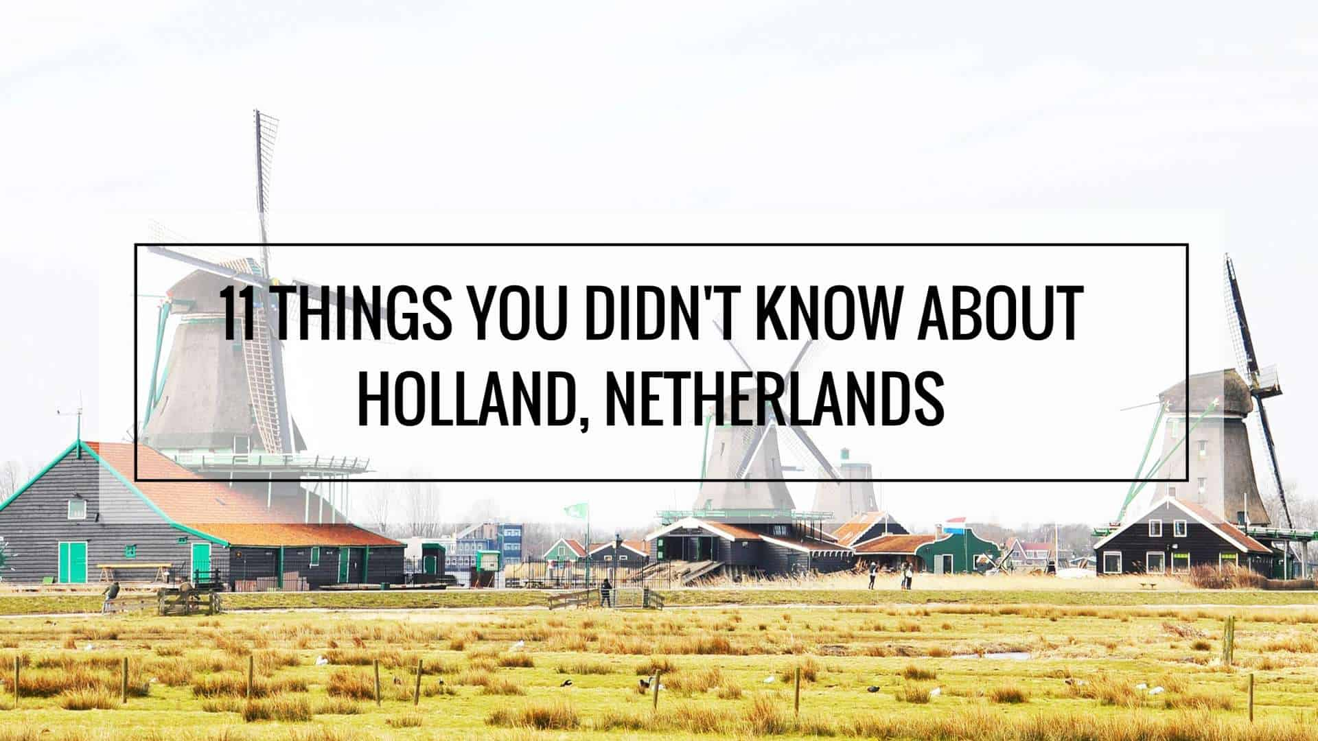 Things You Didnt Know About Netherlands